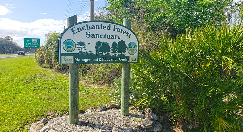 Enchanted Forest Sanctuary Sign