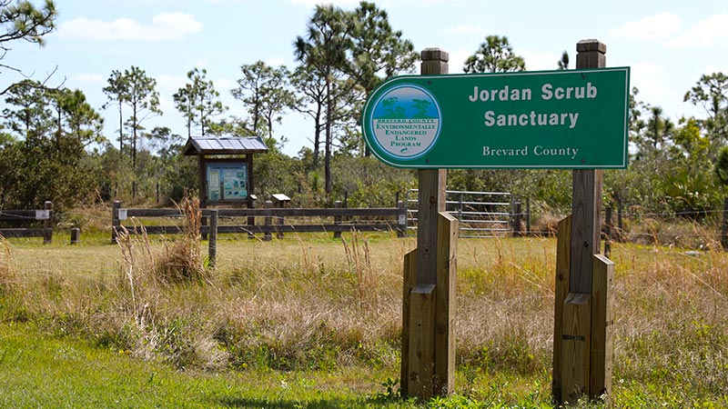 Jordan Scrub Sanctuary Sign
